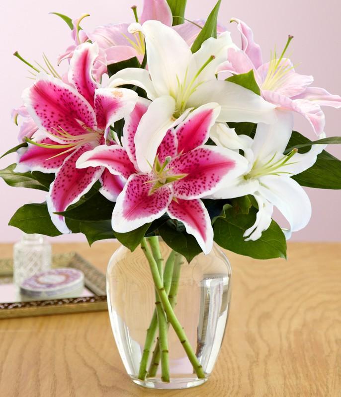 Ảnh có chứa hoa, bàn, cây, trong nhà  Mô tả được tạo tự động
