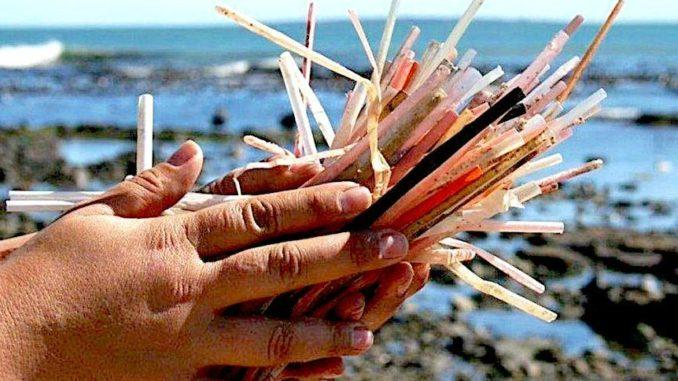 Image result for plastic straws ocean