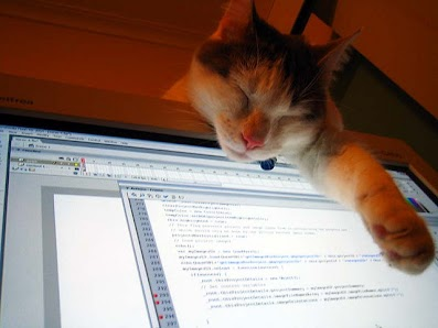Photo of cat draped over computer screen displaying code
