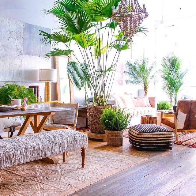 Tanaman sebagai elemen dekorasi utama pada hunian bergaya tropical - source: pinterest.com