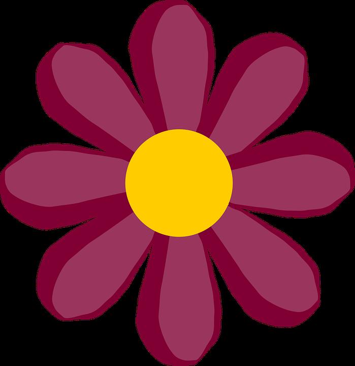 Flower, Plant, Blossom, Bud, ...
