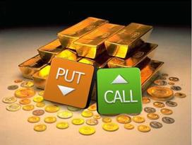 البرنامج الأساسي للاستثمار والتحوط في  أسواق العملات الأجنبية باستخدام عقود الخيارات نادي خبراء المال