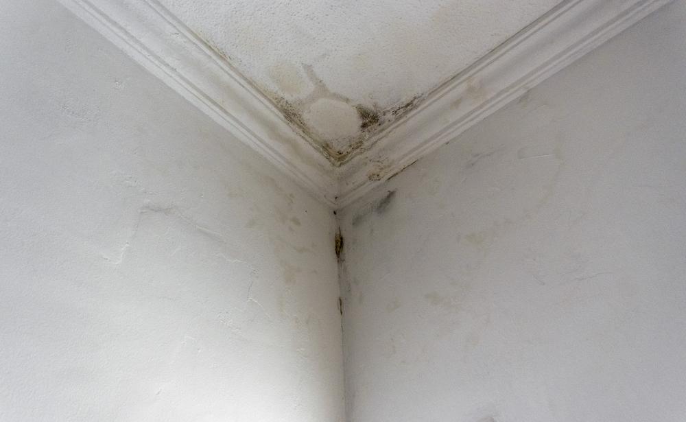 Um canto próximo do teto de uma casa com infiltração.