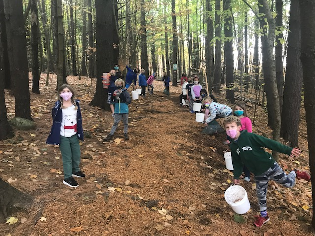 students outdoors for fall clean up