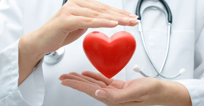 Bảo vệ tim mạch và  giảm mỡ máu