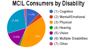 40% had physical disabilities, vision with nearly 14%, cognitive at 11% and the other categories had less than 10%.