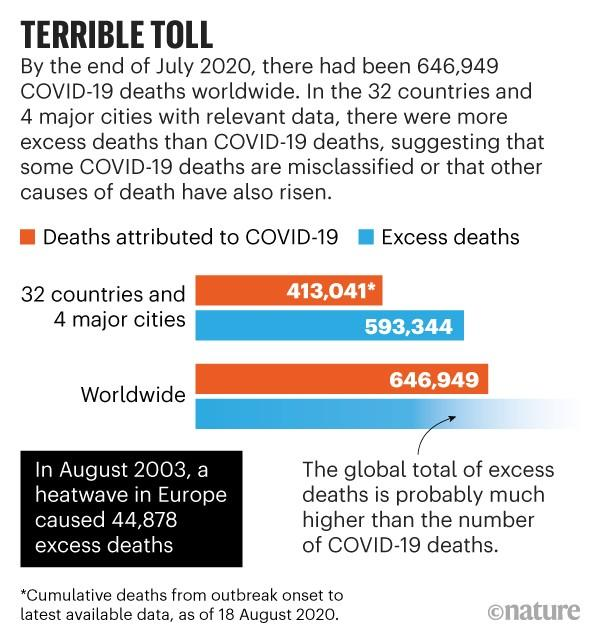 Infographic: Terrible toll. It is likely that the amount of deaths caused by COVID-19 is higher than the number recorded.