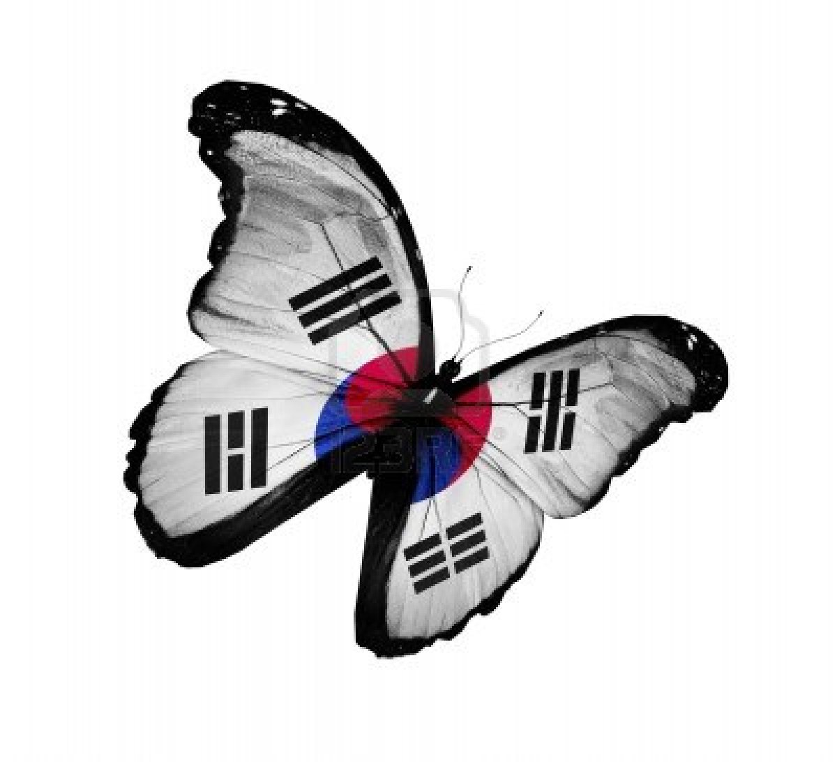 14491021-south-korea-flag-butterfly-flying-isolated-on-white-background.jpg