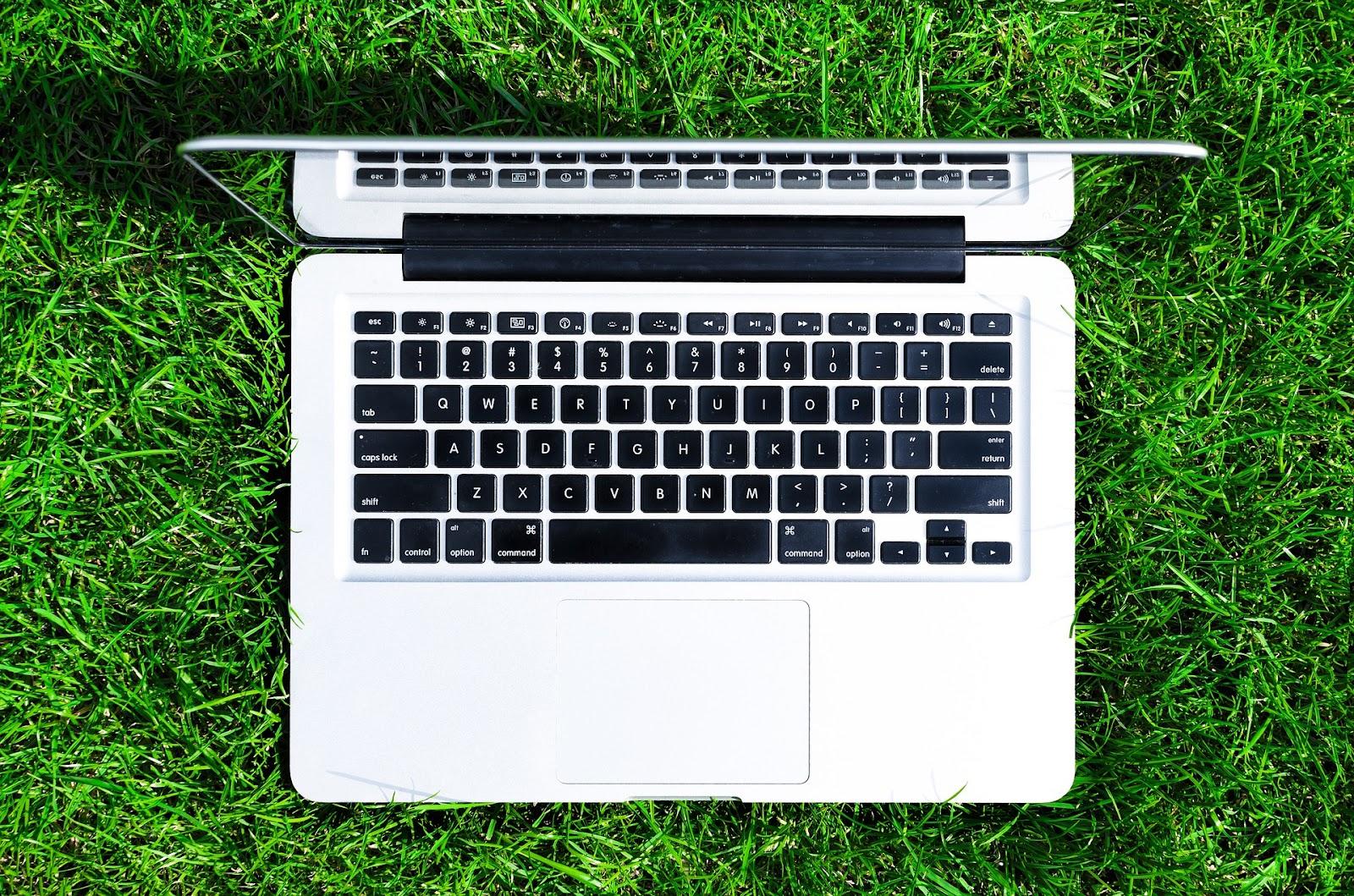 Beneficios de los eventos online con la naturaleza.