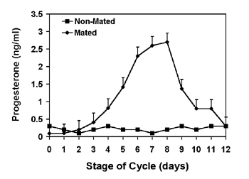 Mean (+s.e.m.) serum progesterone concentrations in non-mated (square) and mated, non-pregnant camels (triangle).