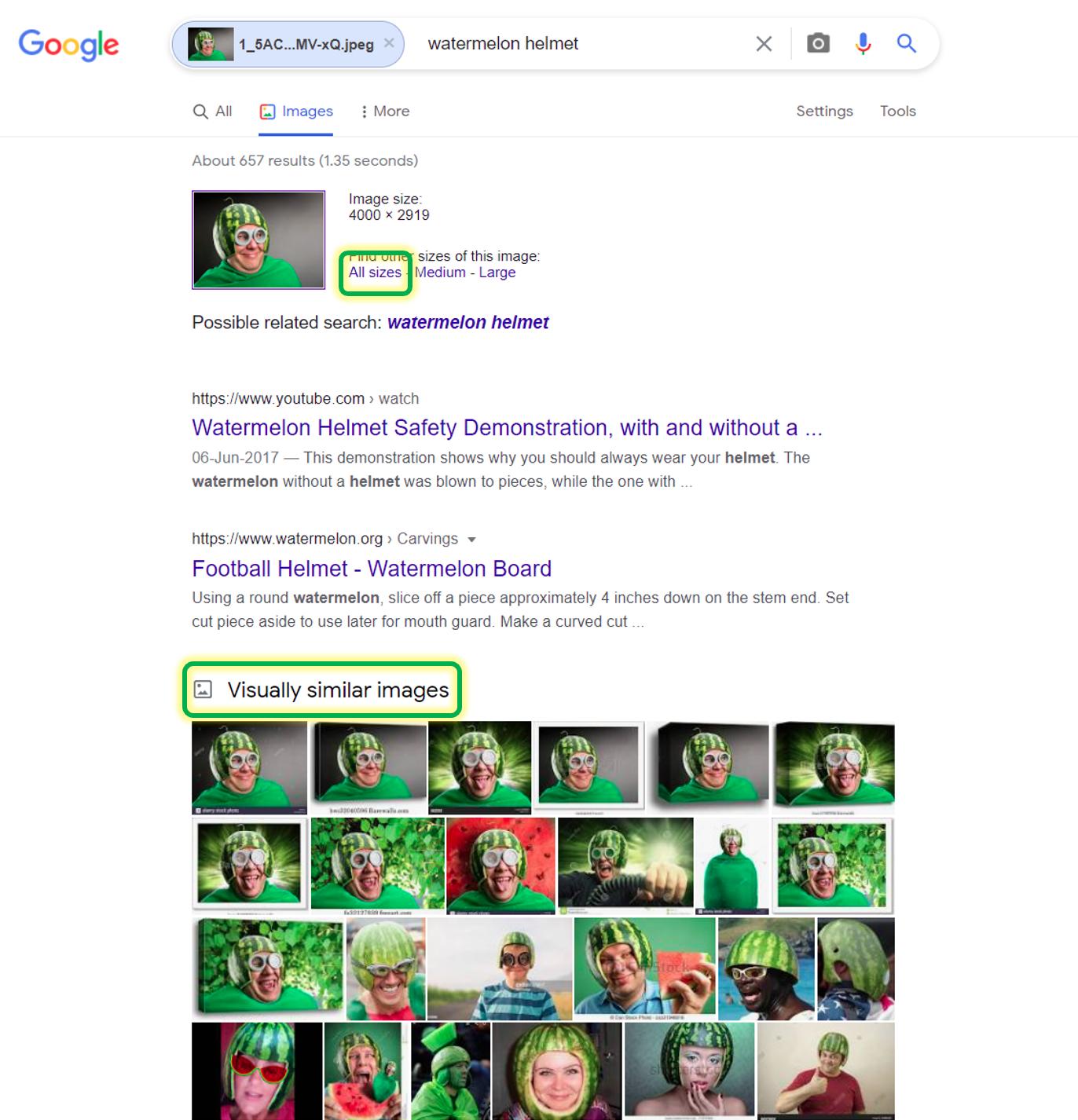 Search Resultlt