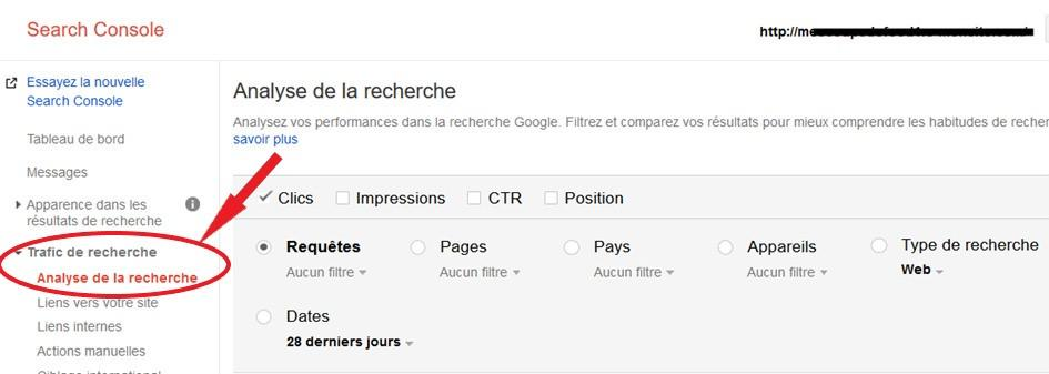capture écran search console de google