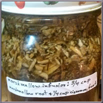 marshmallow root infusion
