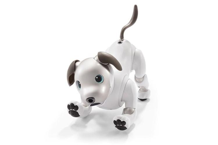 Cún con robot dành cho những người yêu thích thú cưng.