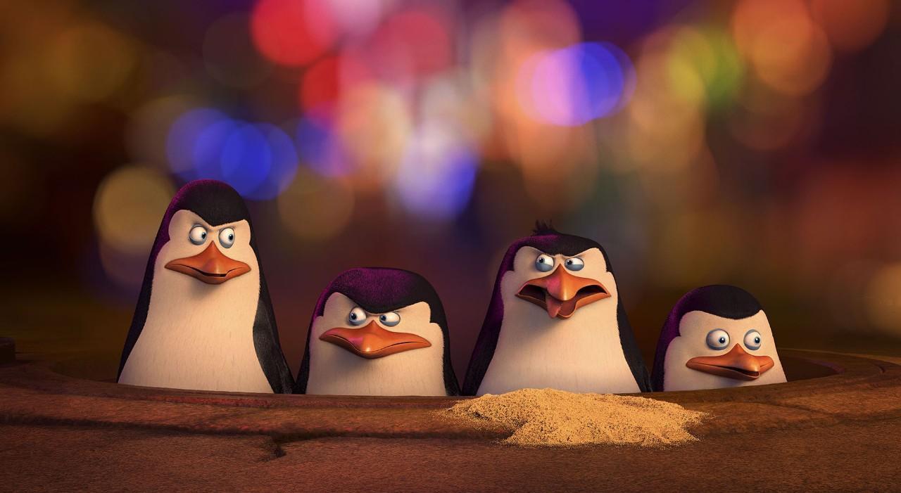 The hilarious penguin squad