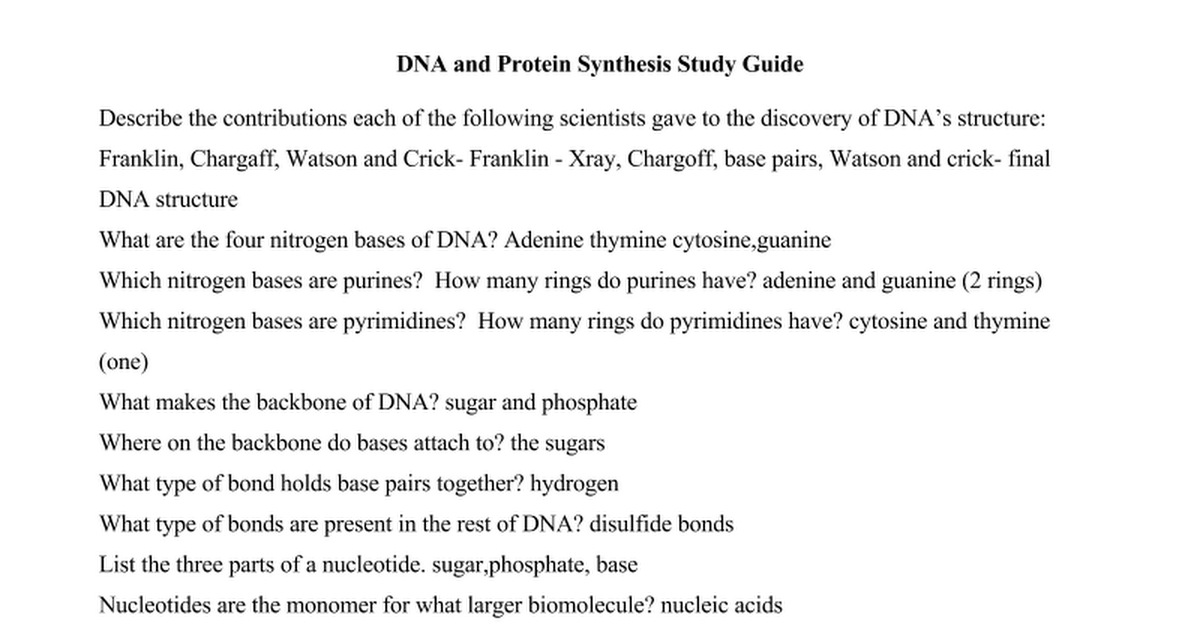 Copy of DNA and Protein Synthesis Study Guide Answer key Google Docs – Protein Synthesis Worksheet Answers