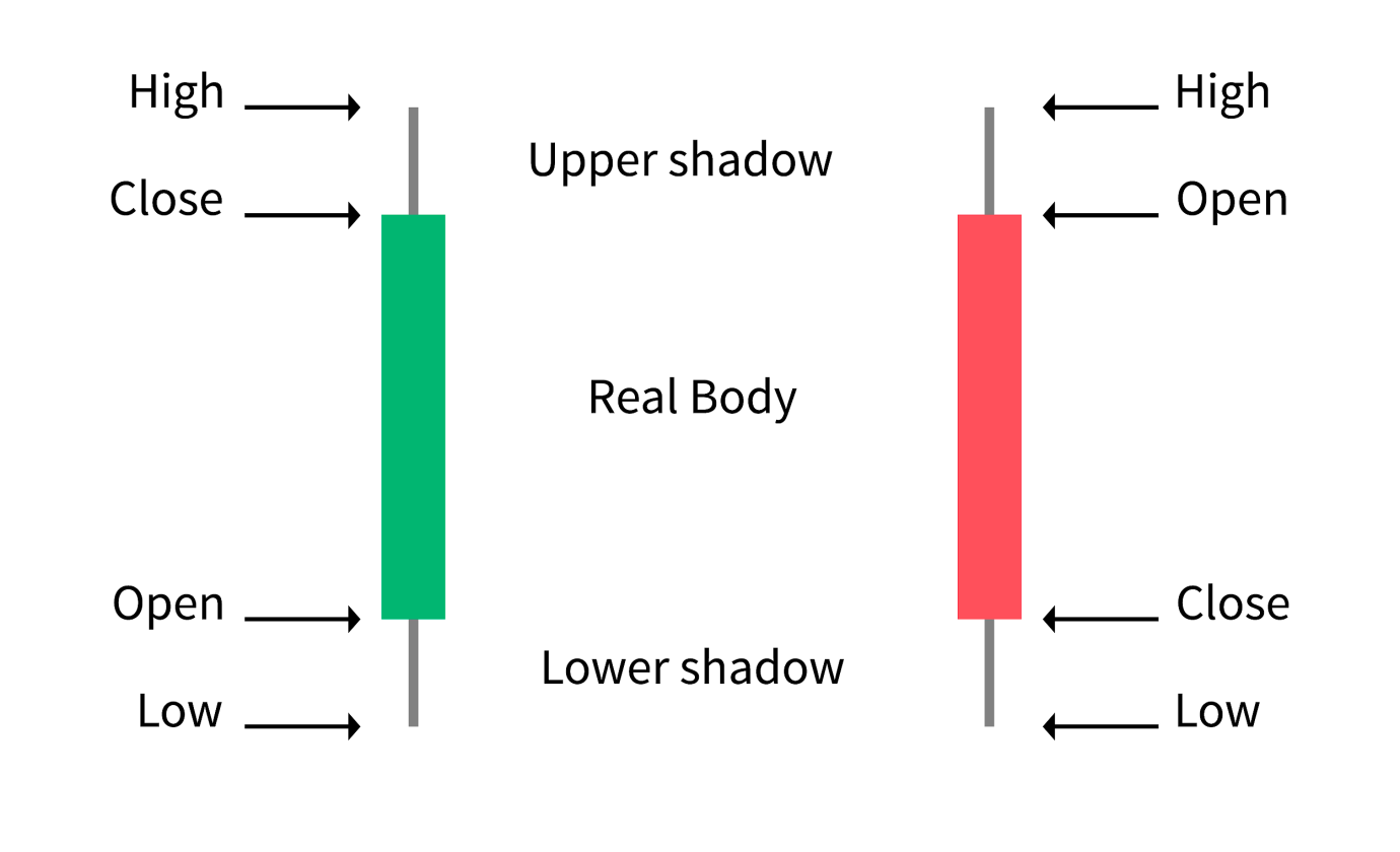 Kryptowaluty i wykresy od podstaw - ich czytanie i zrozumienie