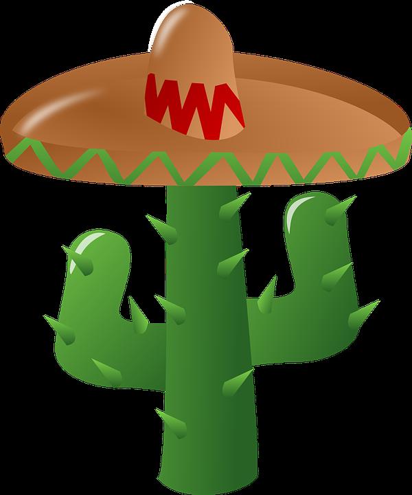 Cactus, Sombrero, Mexican