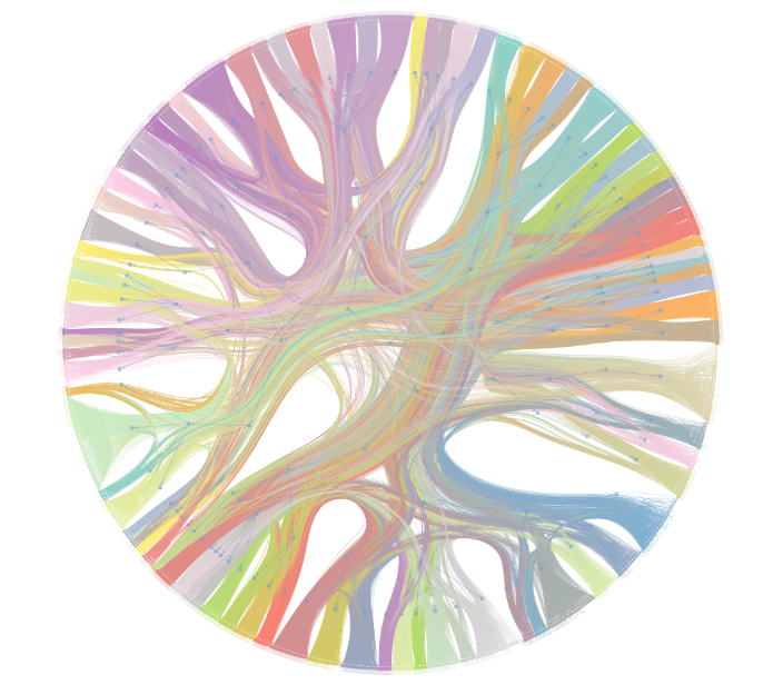 A circle with colored clusters of strands inside of it, with each strand branching off into a different part of the circle. Each color is a node and the colored node groupings represent products often bought in a particular sequence.