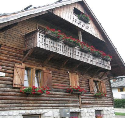 C:\Users\Milena Kosnik\Documents\UO\Komisija za okolje\2015\Fotografije gankov\IMG_4150-40.JPG