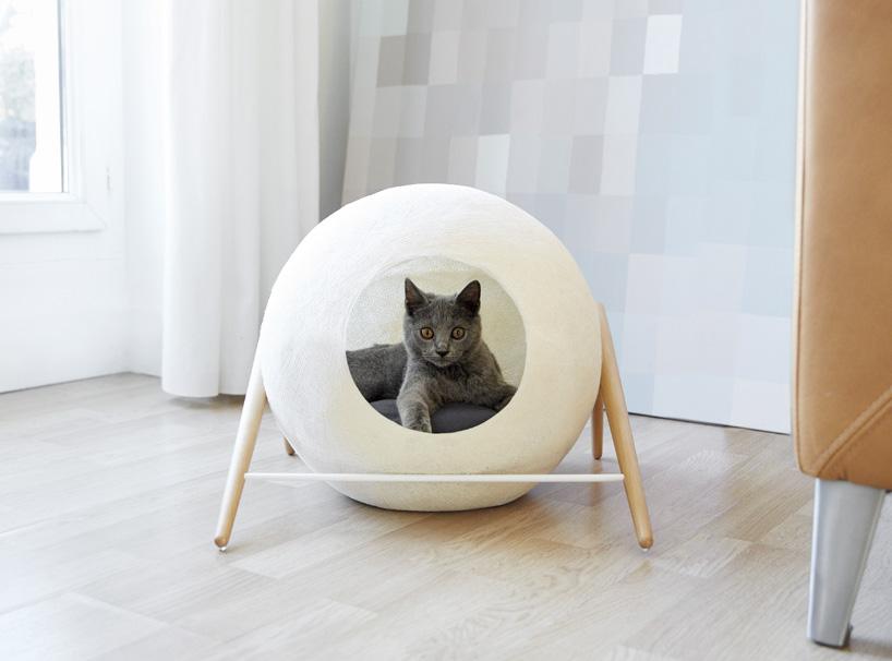 meyou-paris-cat-furniture-designboom-05.jpg
