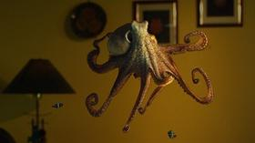 Image result for octopus: making contact