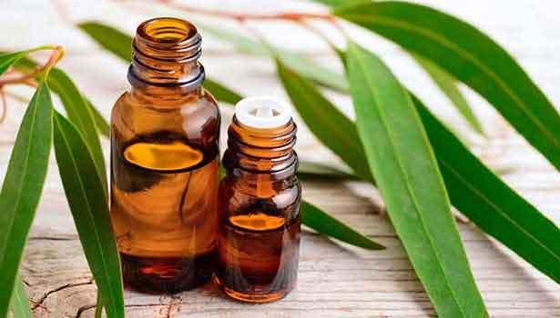 yugaliptus-oil