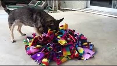 Image result for calming mat for dogs