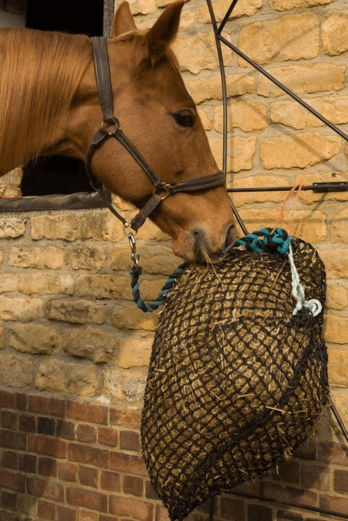 Products prevents the horse from box rest