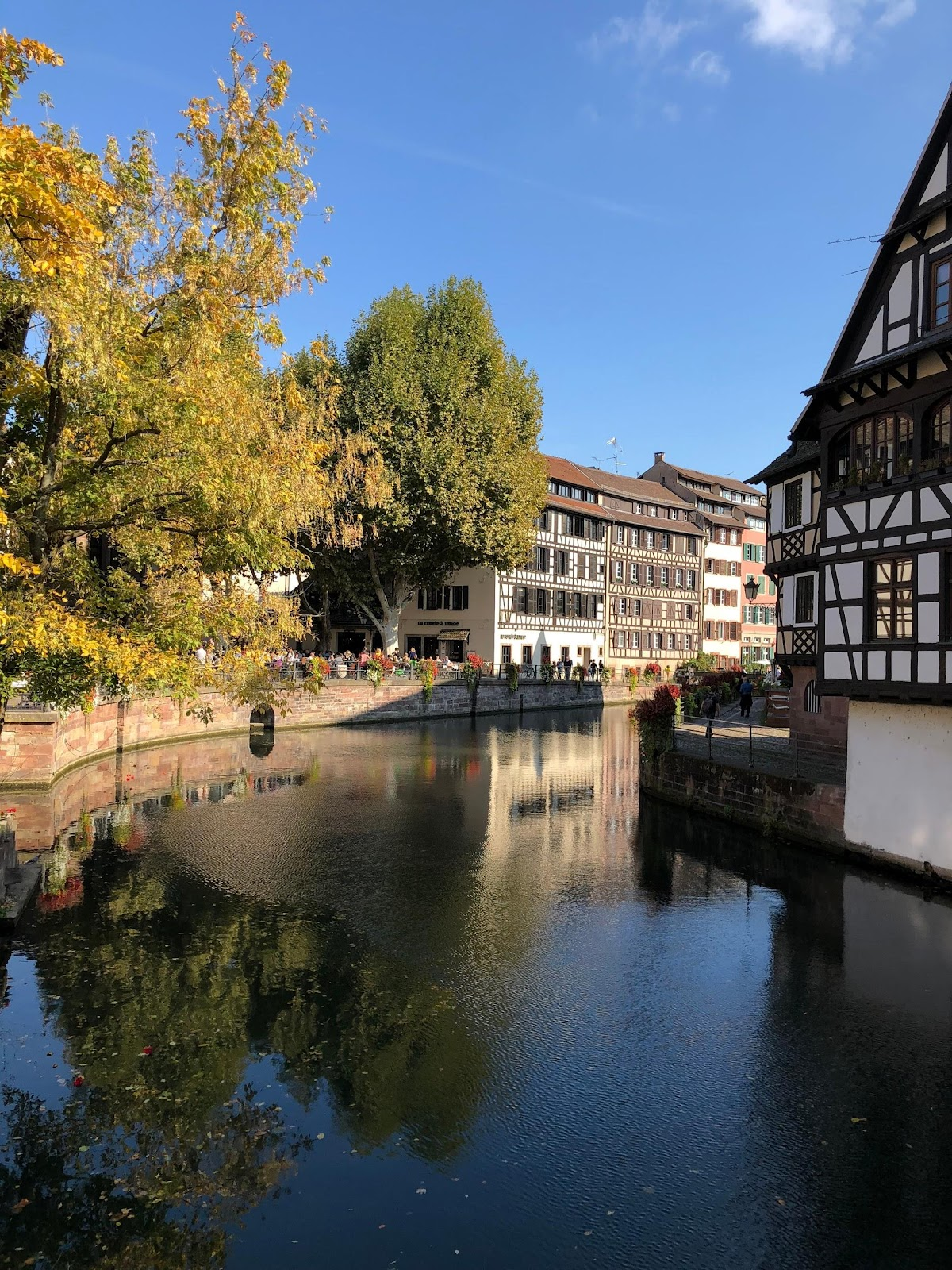 strasbourg medieval old town traditional wooden and white buildings near calm rhein river and yellow trees in france. See Strasbourg during our Black forest Germany road trip itinerary.