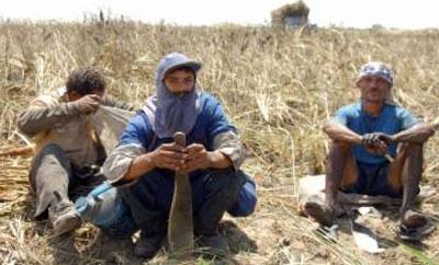 Image result for slave labor