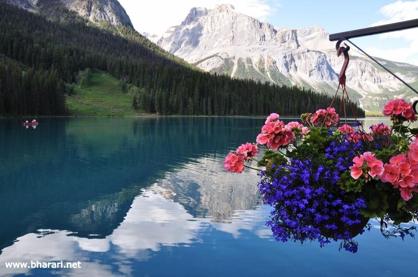 """Emerald Lake - """"Jewel of the Rocky Mountains"""""""