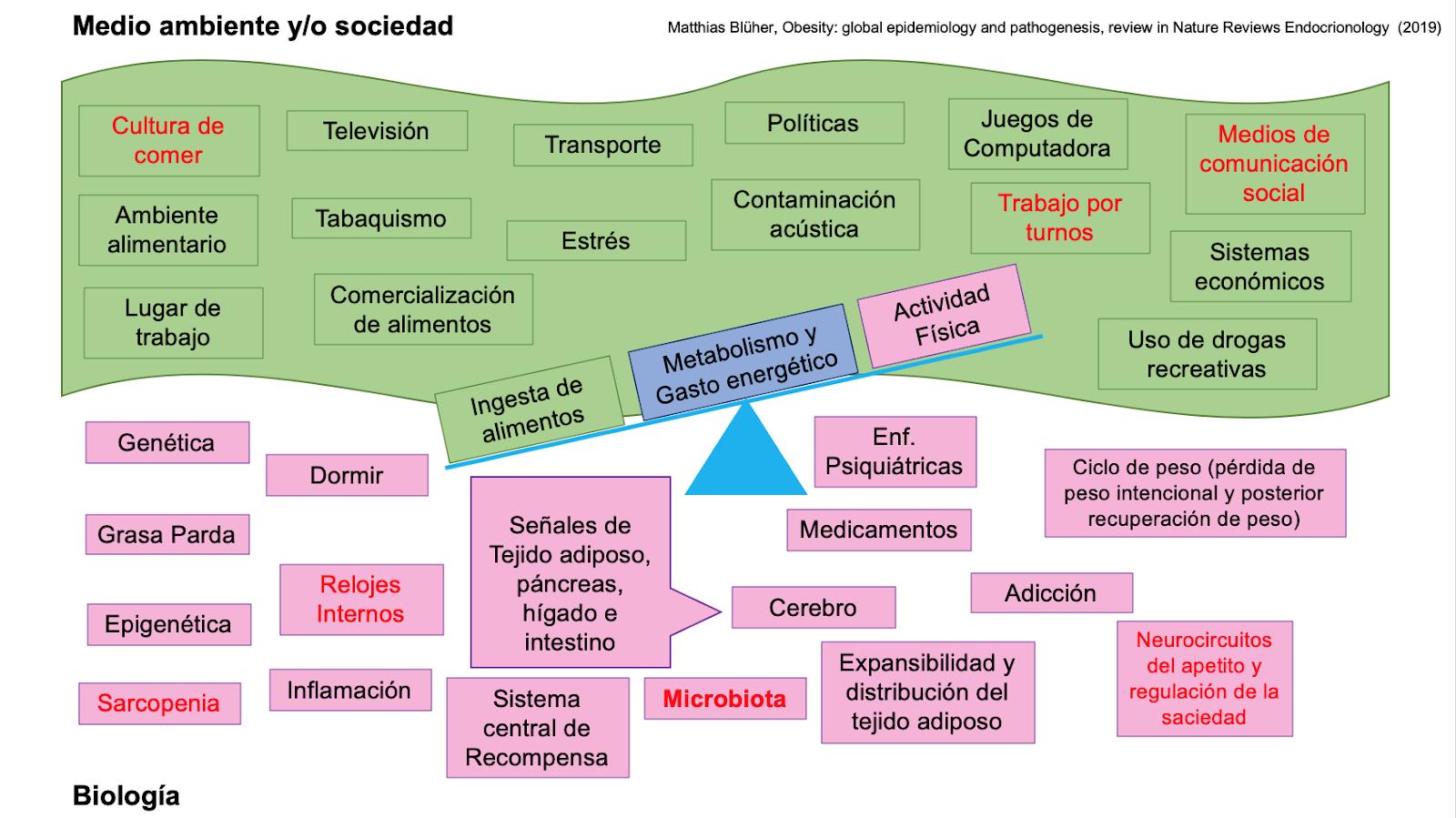 Medio Ambiente y Biologia