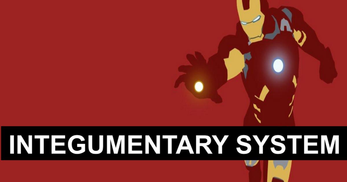 2. Integumentary System - Google Slides