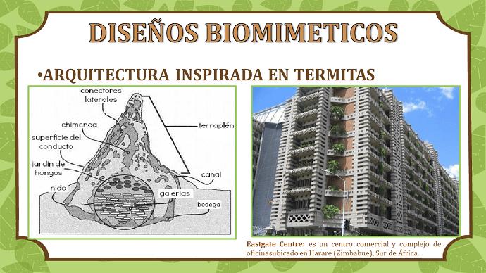 biomimeticos-edificio-termitas-eastagecentre