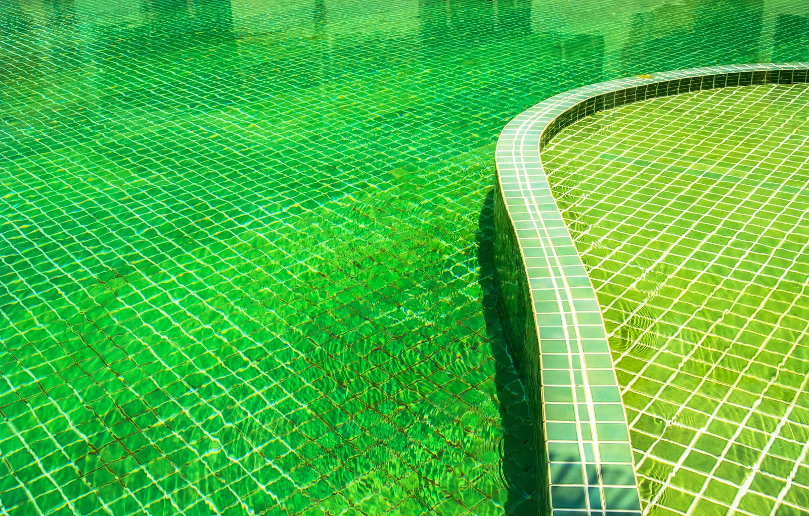 an inground swimming pool with green water in it