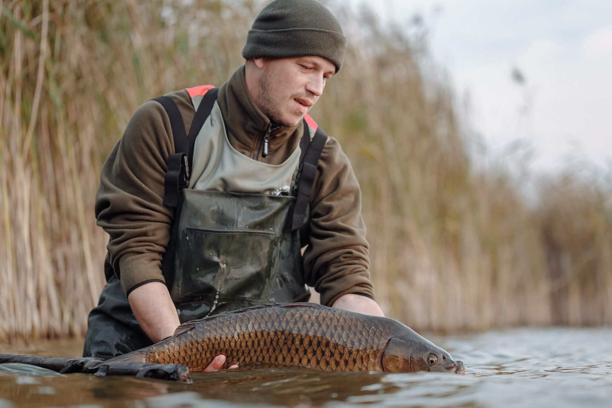 fly fishing with best fly reels