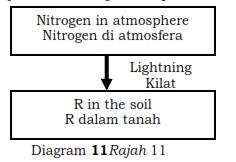 What is R / Apakah R