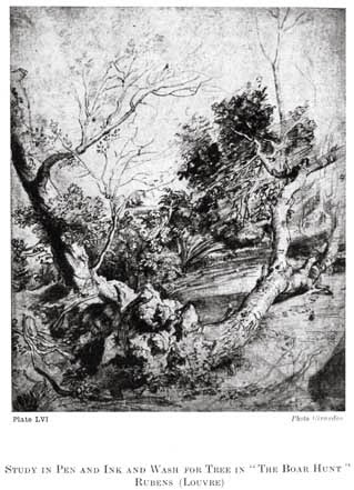 "Plate LVI. STUDY IN PEN AND INK AND WASH FOR TREE IN ""THE BOAR HUNT"" RUBENS (LOUVRE) Photo Giraudon"
