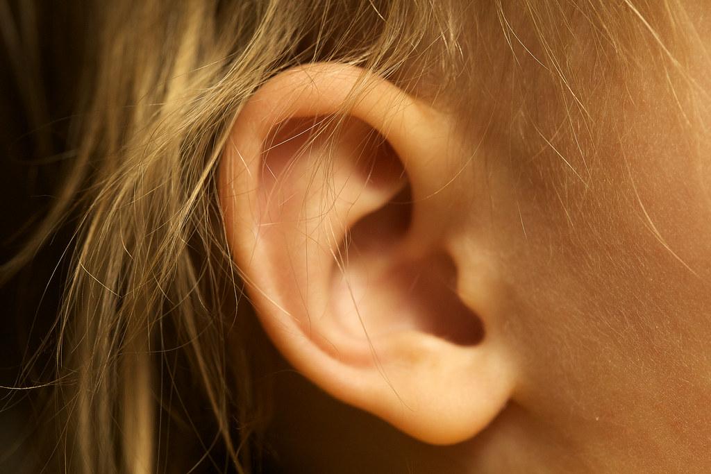 Oreille Ear