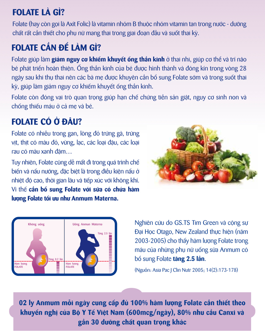 What-is-folate2.jpg