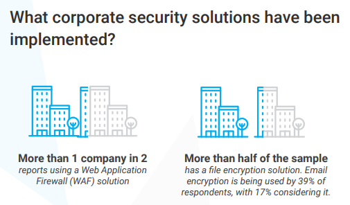 Corporate cybersecurity solutions implemented by companies