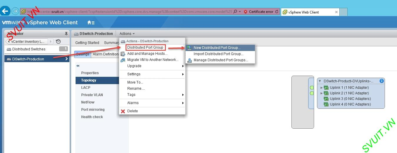 create vSphere Distributed port group (1)