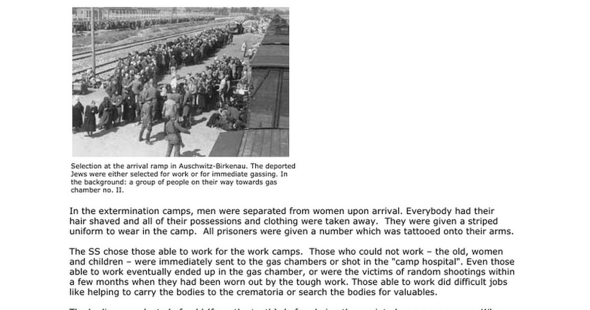 Holocaust Worksheetdocx Google Docs – Holocaust Worksheet