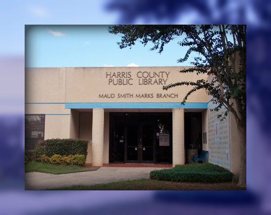 Book Sale at Maud Marks Library in Katy