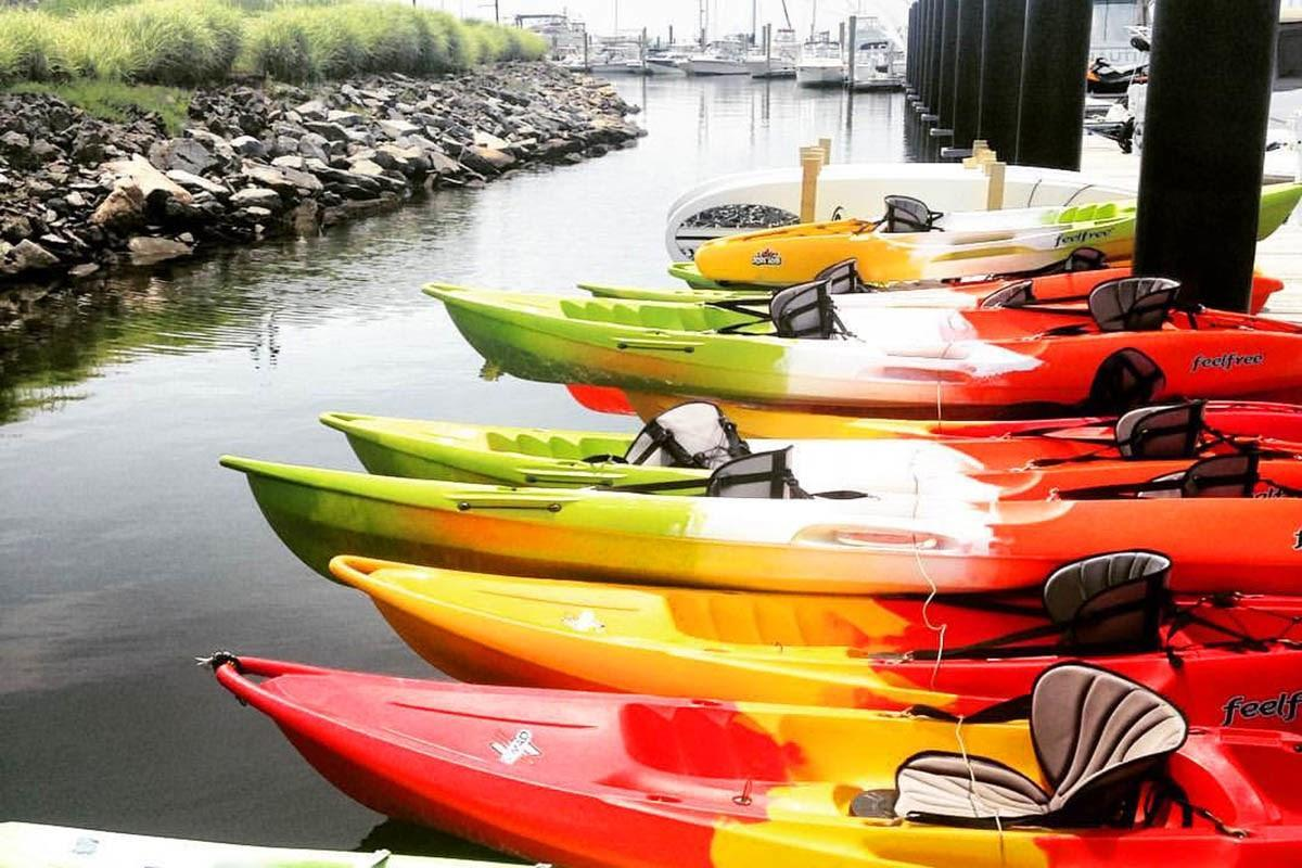 A group of kayaks on a river  Description automatically generated with low confidence
