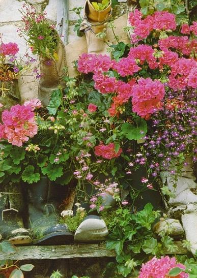 Как садить цветы на балконе