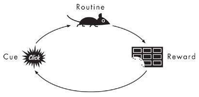 знак, автоматична дія та винагорода в експерименті з мишами