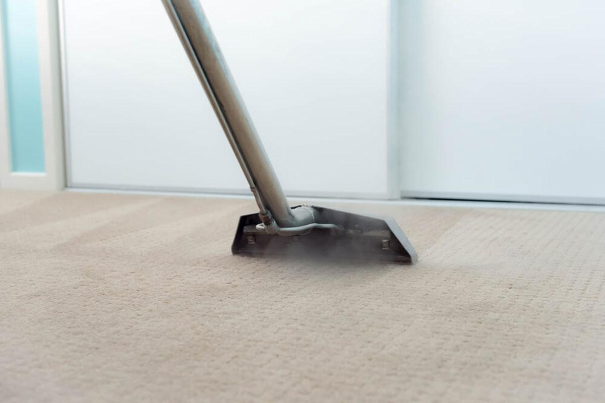 steam carpet