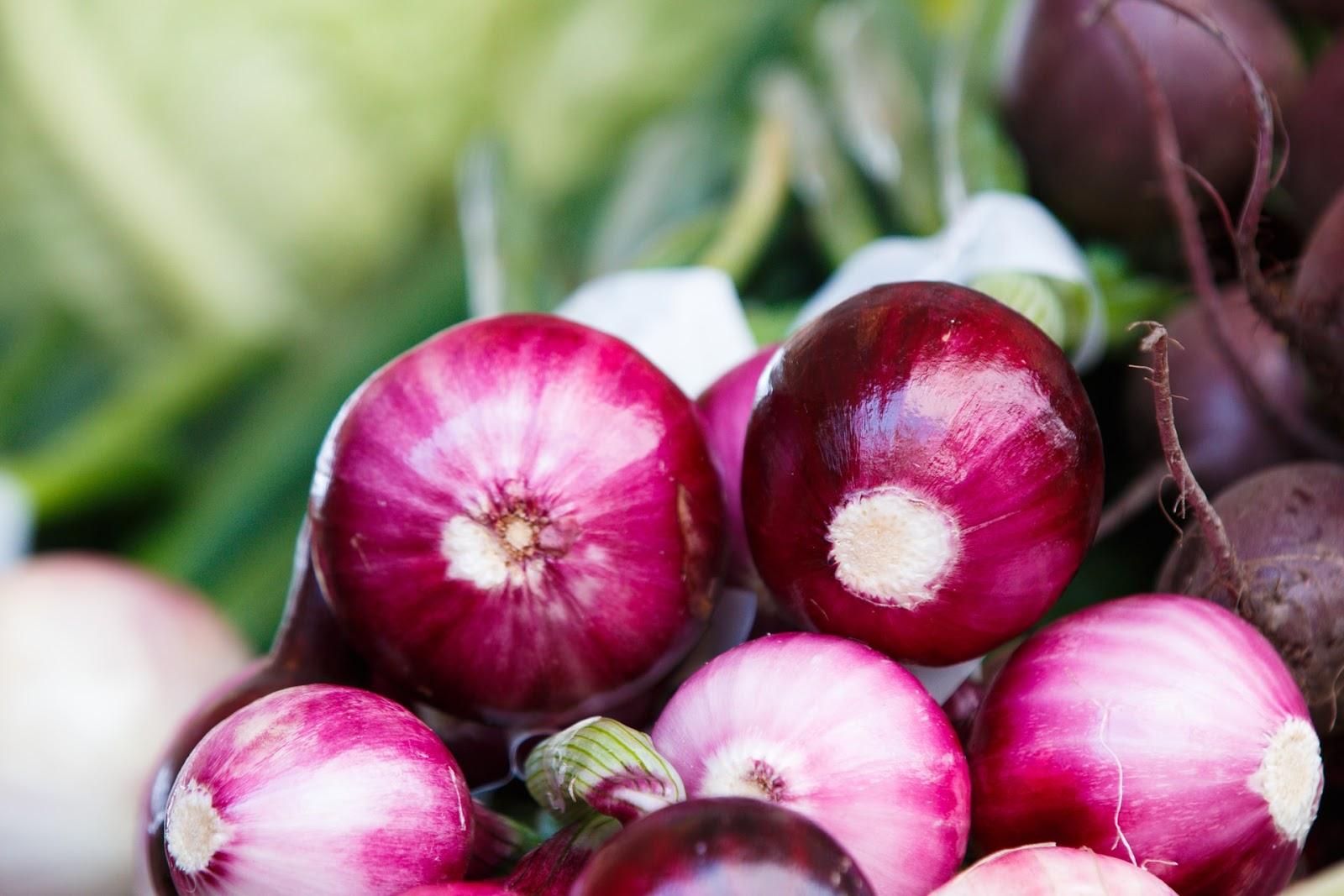 Wie lange sind Zwiebeln haltbar?